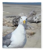 Seagull Bird Art Prints Coastal Beach Driftwood Fleece Blanket
