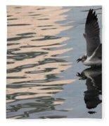 Seagull Fun Fleece Blanket