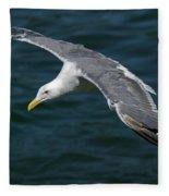 Seagull  In Flight Fleece Blanket