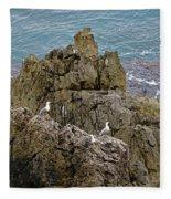 Seagull Island On Cefalu In Sicily  Fleece Blanket