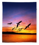 Seagull Sunset   Fleece Blanket