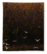 Seagulls In Flight Fleece Blanket