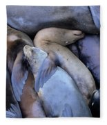 Seal Buddies Fleece Blanket
