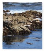 Seal Island Fleece Blanket
