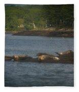 Seal Series 7 Fleece Blanket