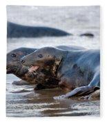 Seals Fleece Blanket