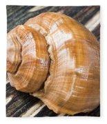 Seashell Fleece Blanket