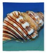 Seashell Wall Art 1 Fleece Blanket