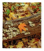 Seashells In The Forest Fleece Blanket