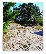 Seaside Path Fleece Blanket