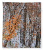 Seasons Overlapping Fleece Blanket