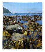 Seaweed Fleece Blanket
