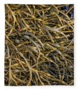Seaweed On The Coast Of Iceland Fleece Blanket