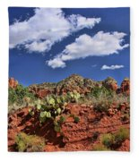 Sedona # 16 - Red Rocks Fleece Blanket