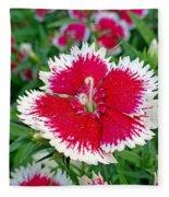 Sedona Dianthus Fleece Blanket
