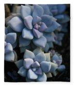 Sedum Clavatum Beautiful Cultivated Stonecrop Fleece Blanket