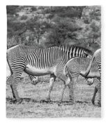 Seeing Stripes Fleece Blanket