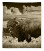 Sepia Toned Photograph Of An American Buffalo Fleece Blanket