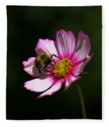 September Bee On Cosmos Fleece Blanket