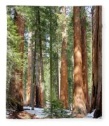 Sequoia Forest Fleece Blanket