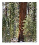 Sequoia General Sherman Fleece Blanket