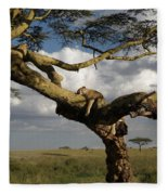 Serengeti Dreams Fleece Blanket