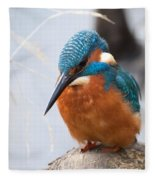 Serious Kingfisher Fleece Blanket
