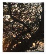 Setting Sun In Tree Fleece Blanket