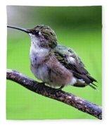 Shades Of Green - Ruby-throated Hummingbird Fleece Blanket