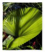 Shadow On A Ruffled Fan Palm Fleece Blanket