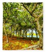 Shady Grove At Wai'anapanapa Fleece Blanket