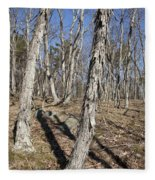 Shagbark Hickory Forest  Fleece Blanket