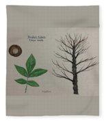 Shagbark Hickory Tree Id Fleece Blanket