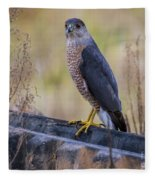Shakerag Coopers Hawk Fleece Blanket