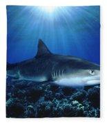 Shark In The Dark Fleece Blanket