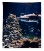 Shark In Zoo Aquarium Fleece Blanket