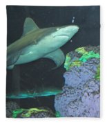 Shark Fleece Blanket