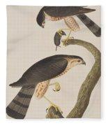 Sharp-shinned Hawk Fleece Blanket