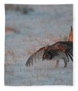 Sharptail Grouse On Snow Fleece Blanket