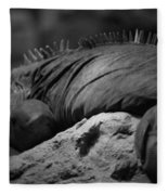 Shedd Aquarium Iguana Fleece Blanket