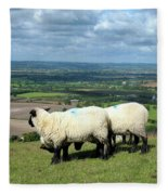 Sheep At Westbury Tor Fleece Blanket
