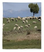 Sheep Country Fleece Blanket