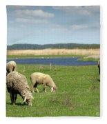 Sheep On Pasture Nature Farm Scene Fleece Blanket