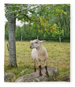 Happy Sheep Posing For Her Photo Fleece Blanket