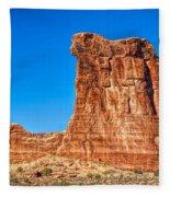 Sheep Rock Fleece Blanket