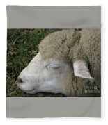 Sheep Sleep Fleece Blanket