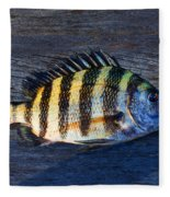 Sheepshead Fish Fleece Blanket