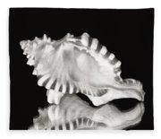 Shell And Reflection Fleece Blanket