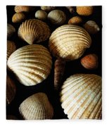 Shell Art - D Fleece Blanket