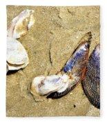 Shells On The Beach Of Jekyll Fleece Blanket